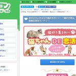 横浜「猫好き男女、集合★20~35歳限定恋活パーティー」開催8/9